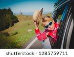 happy little boy enjoy travel... | Shutterstock . vector #1285759711
