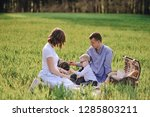 family on a picnic in the... | Shutterstock . vector #1285803211