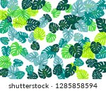 beautiful philodendron or... | Shutterstock .eps vector #1285858594