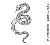 tattoo snake. traditional black ... | Shutterstock .eps vector #1285867651