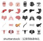 internal organs of a human... | Shutterstock .eps vector #1285868461