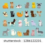 Stock vector vector illustration set of cute and funny cartoon pet characters different breed of dogs and cats 1286122231