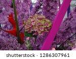 various flowers in different...   Shutterstock . vector #1286307961