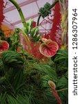various flowers in different...   Shutterstock . vector #1286307964