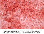 coral colored sheepskin rug... | Shutterstock . vector #1286310907