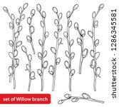 vector set with outline willow... | Shutterstock .eps vector #1286345581