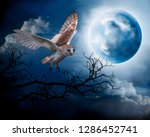 Stock photo flying owl on the background of the night sky illustration of owls on the background of the moon 1286452741