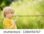 charming blonde little boy... | Shutterstock . vector #1286456767