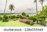 a natural garden beach of...   Shutterstock . vector #1286555464