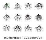 collection of black root tree.... | Shutterstock .eps vector #1286559124