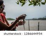 Girl Holding A Little Crocodil...