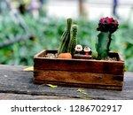 grand in garden   Shutterstock . vector #1286702917
