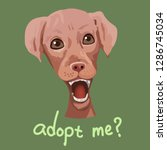 pet adoption poster.the dog is... | Shutterstock .eps vector #1286745034