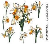 Vector Floral Illustration Whit ...