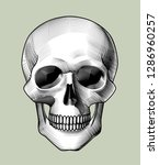 human skull full face. horror... | Shutterstock .eps vector #1286960257