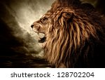Stock photo roaring lion against stormy sky 128702204
