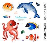 Underwater Creatures....