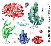 underwater creatures.... | Shutterstock . vector #1287146227