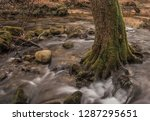 the river natural   | Shutterstock . vector #1287295651