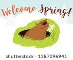 happy groundhog day. greeting...   Shutterstock .eps vector #1287296941