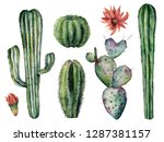 watercolor cacti set. hand... | Shutterstock . vector #1287381157