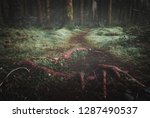 a low angle image of entangled... | Shutterstock . vector #1287490537