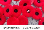 Remembrance Day Poppies And...