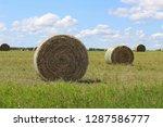 closeup of a hay bail circular... | Shutterstock . vector #1287586777