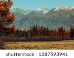 golden autumn in mountains.... | Shutterstock . vector #1287593941