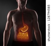 focused on man digestive system | Shutterstock . vector #128794585