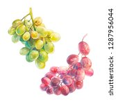 watercolor green and red grape... | Shutterstock . vector #1287956044