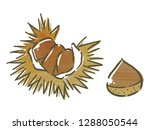 chestnut with watercolor texture | Shutterstock .eps vector #1288050544