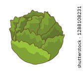 lettuce isolated icon | Shutterstock .eps vector #1288108231