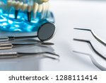 professional dentist tools in... | Shutterstock . vector #1288111414
