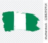 flag nigeria from brush strokes....