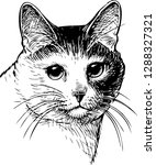 vector drawing of a portrait of ... | Shutterstock .eps vector #1288327321