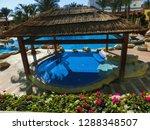 sharm el sheikh  egypt  ... | Shutterstock . vector #1288348507