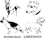 vector drawings sketches...   Shutterstock .eps vector #1288554424