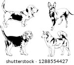 vector drawings sketches...   Shutterstock .eps vector #1288554427