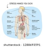 Medical Info Graphics About Th...