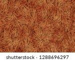 brown soft fleece shaggy animal ... | Shutterstock . vector #1288696297