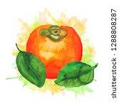 juicy sketch persimmon on paint ...   Shutterstock . vector #1288808287