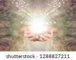 sending you high resonance... | Shutterstock . vector #1288827211