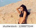beautiful brunette with long... | Shutterstock . vector #1288873144