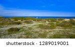 nova tabarca island in alicante ... | Shutterstock . vector #1289019001