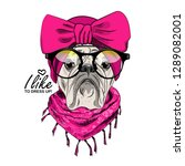 vector dog with pink turban ... | Shutterstock .eps vector #1289082001