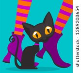 cat on the feet of a witch | Shutterstock .eps vector #1289203654