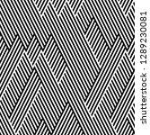 ratio between all black and... | Shutterstock .eps vector #1289230081