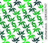 bamboo leaves pattern concept... | Shutterstock .eps vector #1289230747