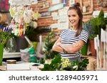cheerful young floorist... | Shutterstock . vector #1289405971